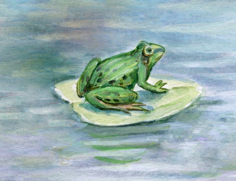 Download Frog stock illustration. Image of bufonidae, paddock, toad - 7302542