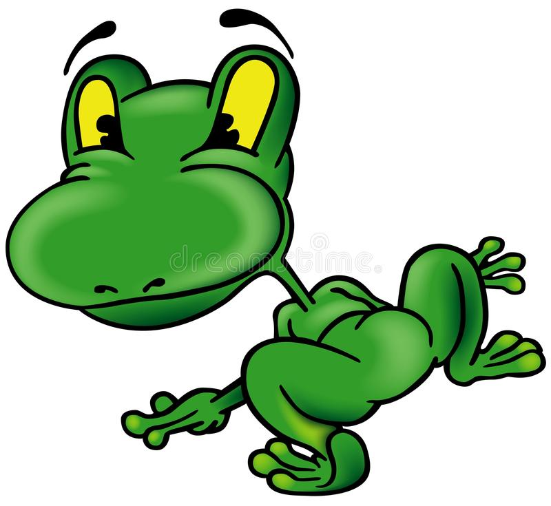 Download Frog from the Back stock vector. Image of green, animal - 17707075