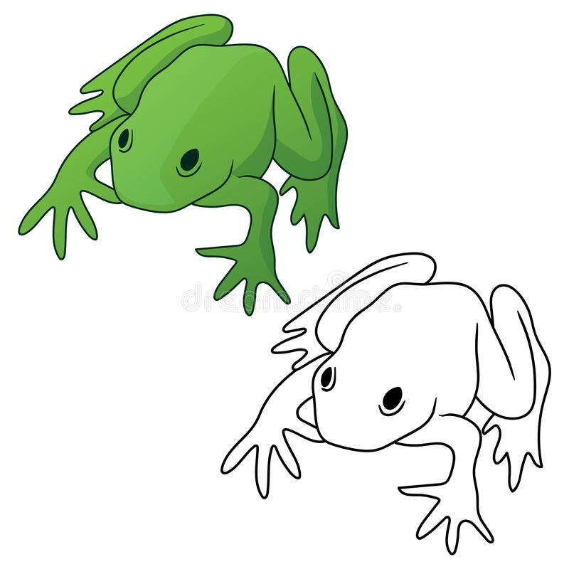 Frog in both full color green tones and black outline version isolated vector illustration royalty free illustration