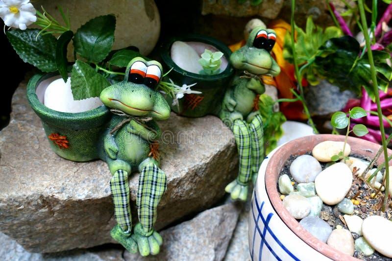 Frog couple stock photos