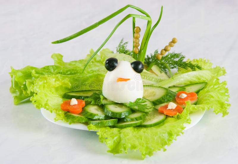 Frog from egg stock photography
