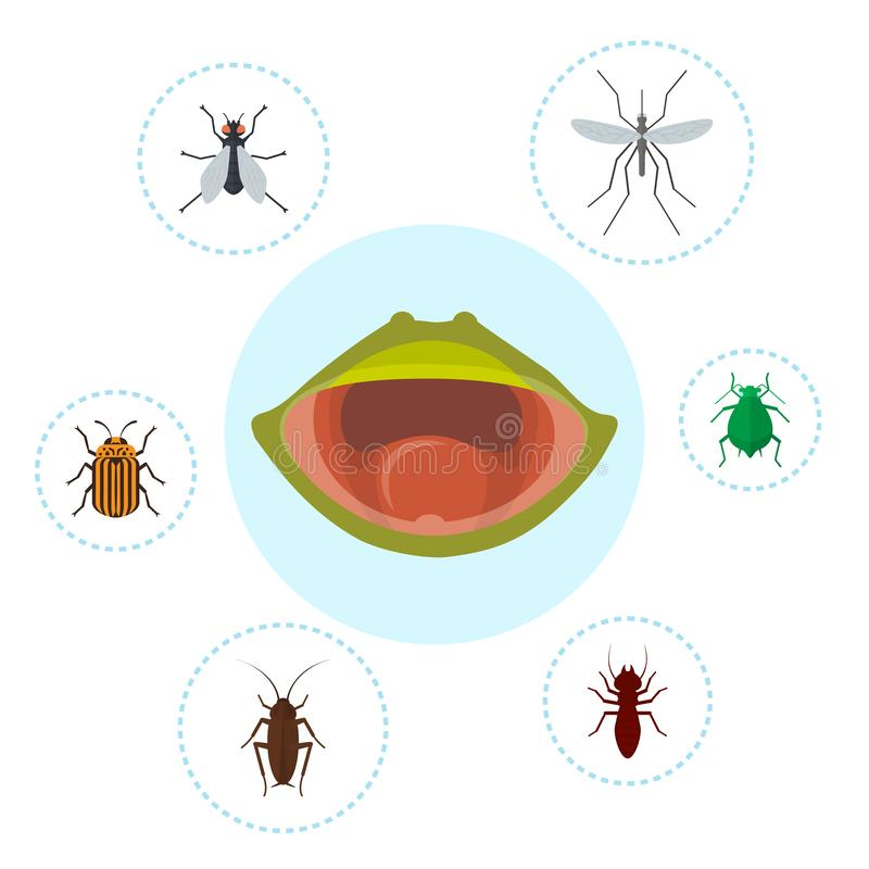 Frog food and nutrition of crocket, moscito, fly and bugs vector illustration. Biology, frogs food chain. Bufo, european. Tod or froggy mouth. Infographics stock illustration