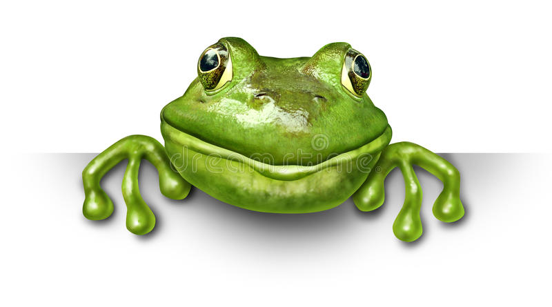 Download Frog holding a blank sign stock illustration. Image of closeup - 21588352