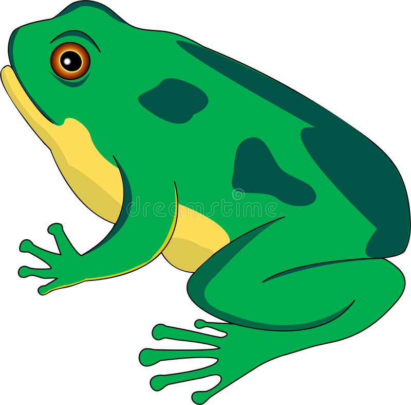Frog lifecycle 2 stock illustration