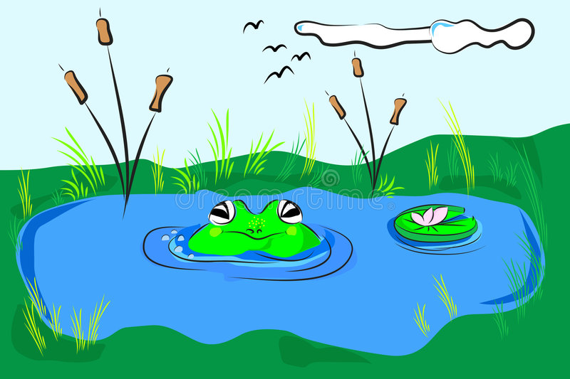 Frog in the pond stock illustration