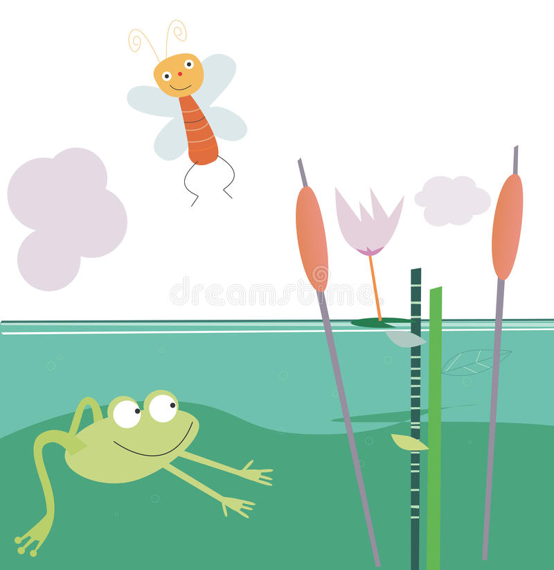 The frog in the pool stock photography