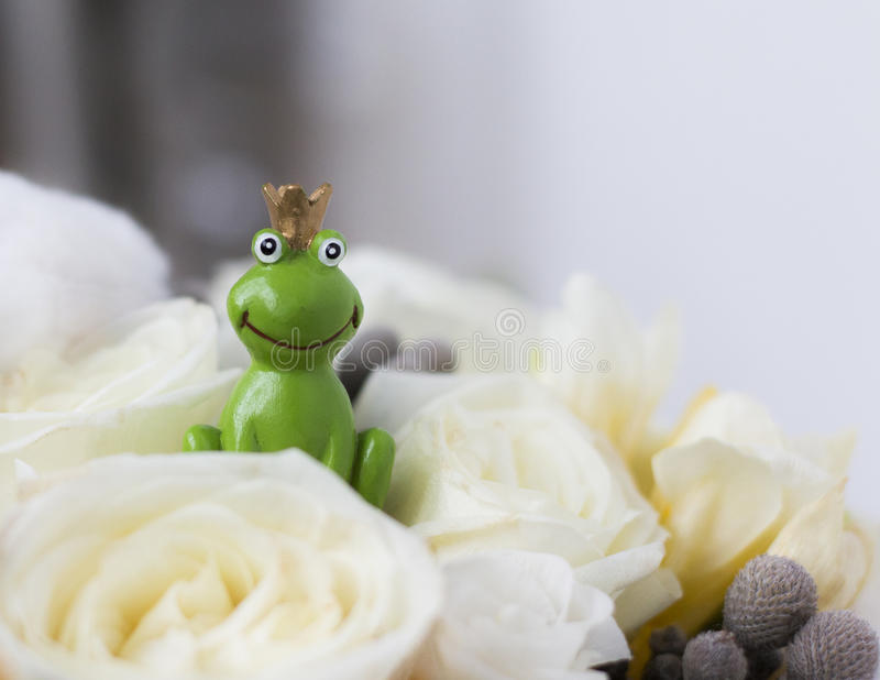 Frog Prince in white roses wedding bouquet. The prince is waiting for you stock photography