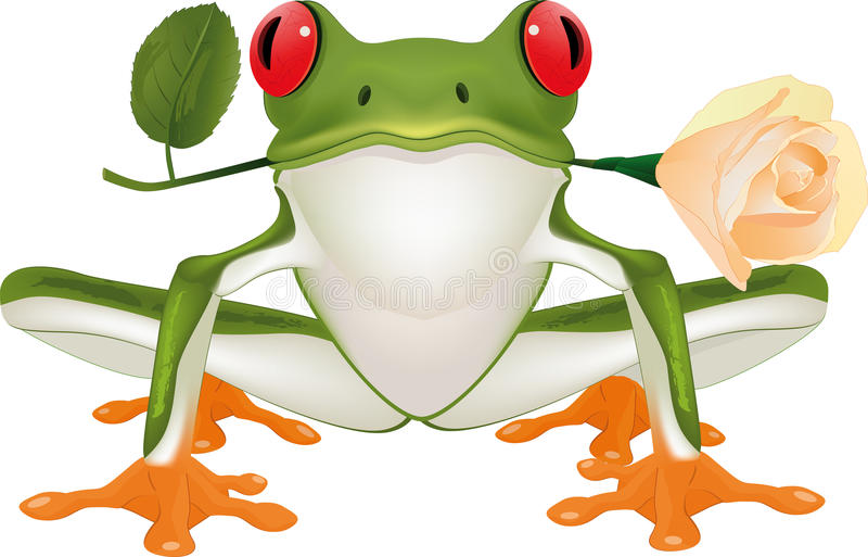 Frog With A Rose Royalty Free Stock Photography