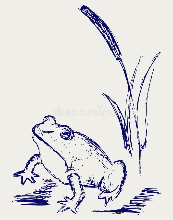 Frog Sketch Stock Image