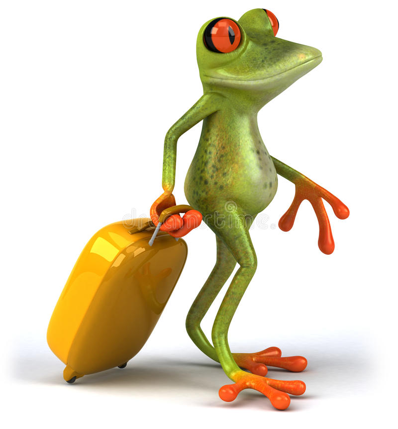Frog and suitcase