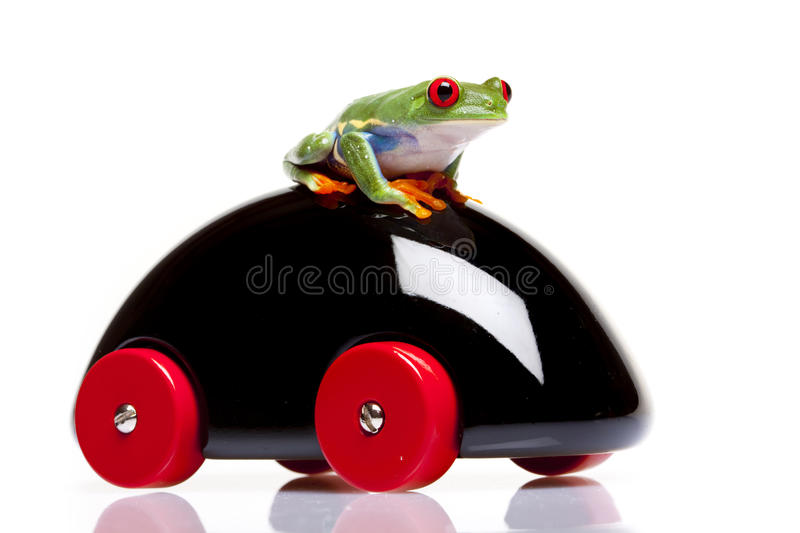 Frog and Toy. Green Frog and black Toy mobile. isolated on white background stock photos
