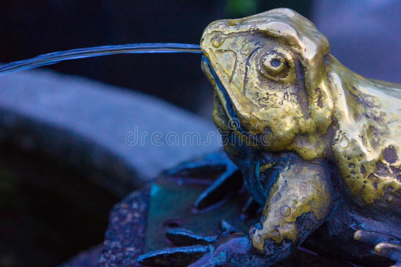 Frog Water Fountain. Brass frog spews water into garden water feature. The worn brass shows many hands have rubbed on this frog for Good Luck stock image