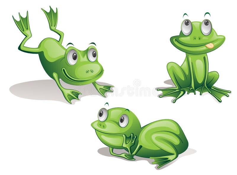 Frogs stock illustration