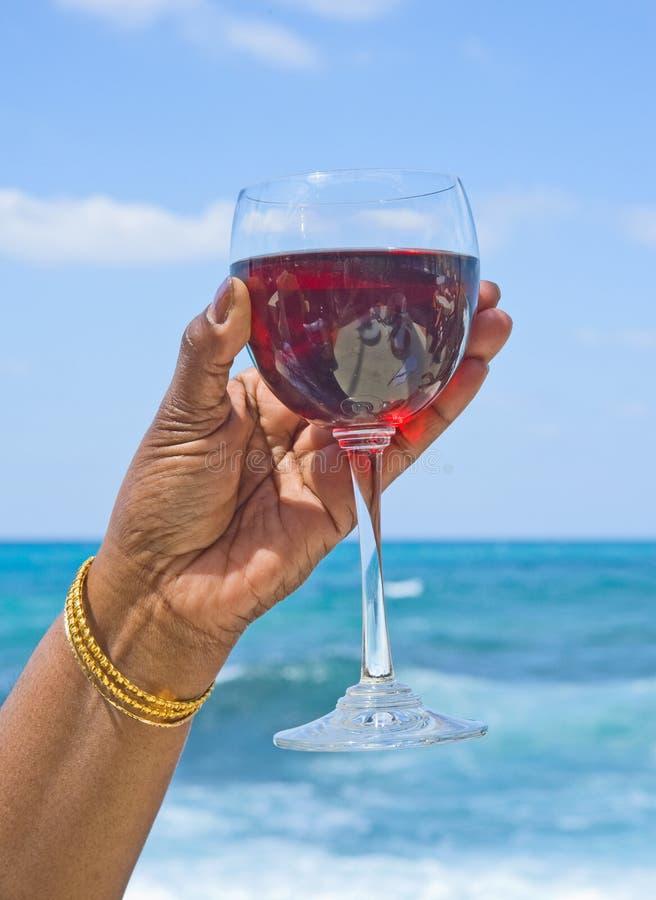 Frohe Feiertage: heben Sie ein Glas zu dem an. lizenzfreie stockfotos