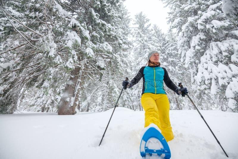 Frohe Frau läuft auf Schneeschuhen durch den Koniferenwald lizenzfreie stockfotos