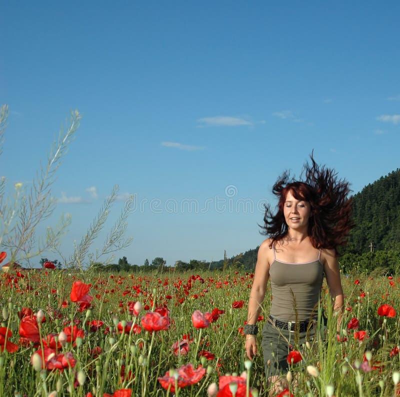 Frohe Gefühle auf einem Mohnblumegebiet stockbilder