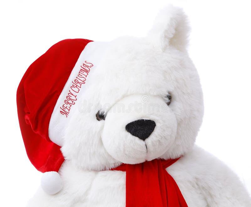Frohe Weihnacht-Teddybär Lizenzfreies Stockbild