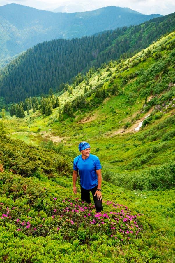 Froher Abenteurer klettert den grünen Berghang lizenzfreie stockfotos