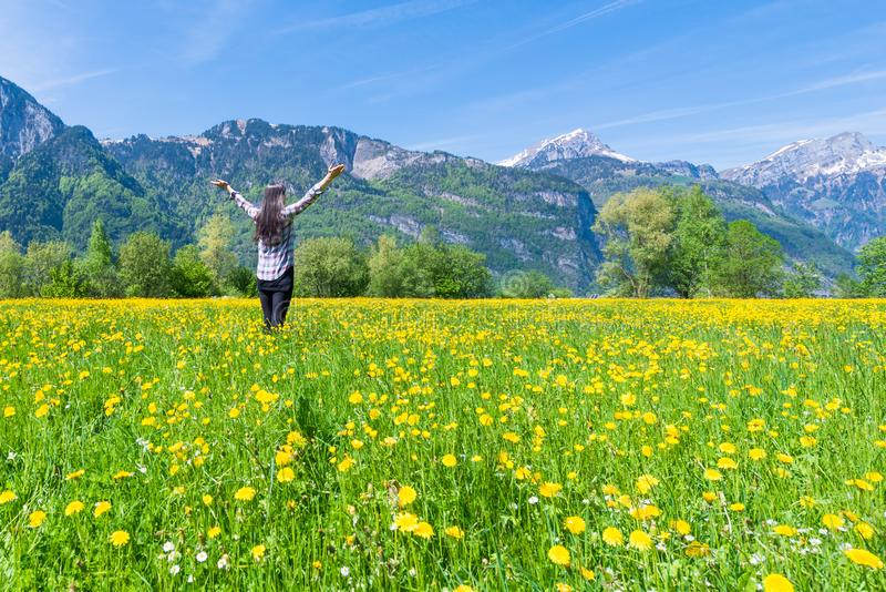 Froher Sommer stockfotos
