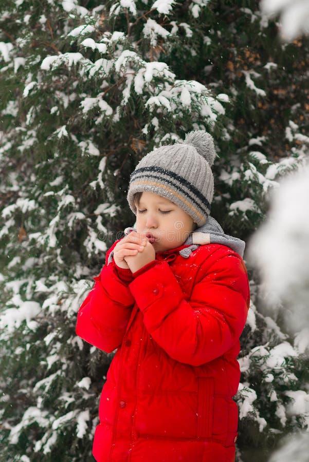 Froid d'hiver Le garçon souffle sur ses mains, les chauffant Hiver franc image stock