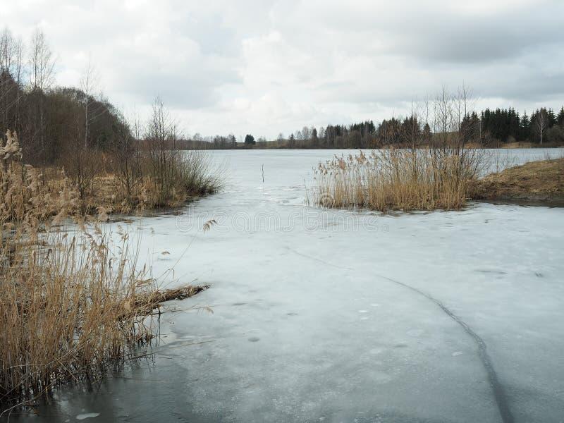 Froid, sombre, jour d'hiver au début de l'hiver photographie stock libre de droits