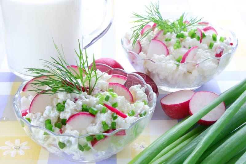 Fromage blanc avec le radis photo stock