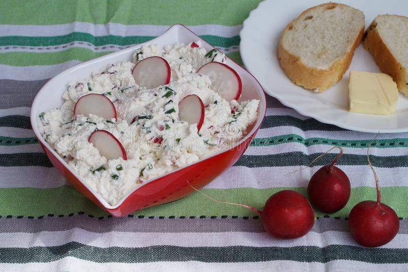 Fromage blanc avec le radis image stock