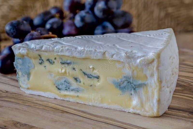 Fromage bleu et raisins image libre de droits