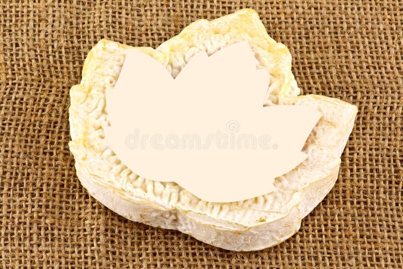 Fromage de chèvres photo libre de droits