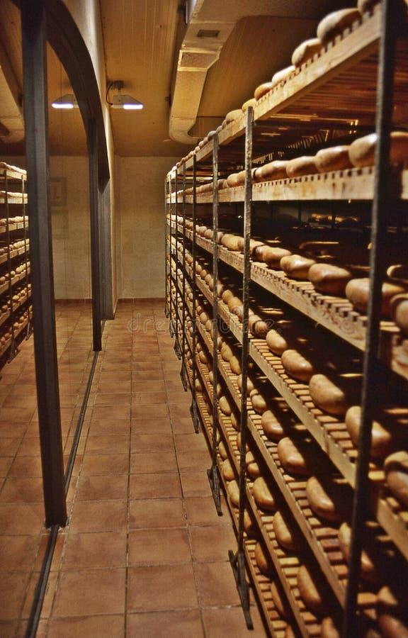 Fromage de Coinga photo stock