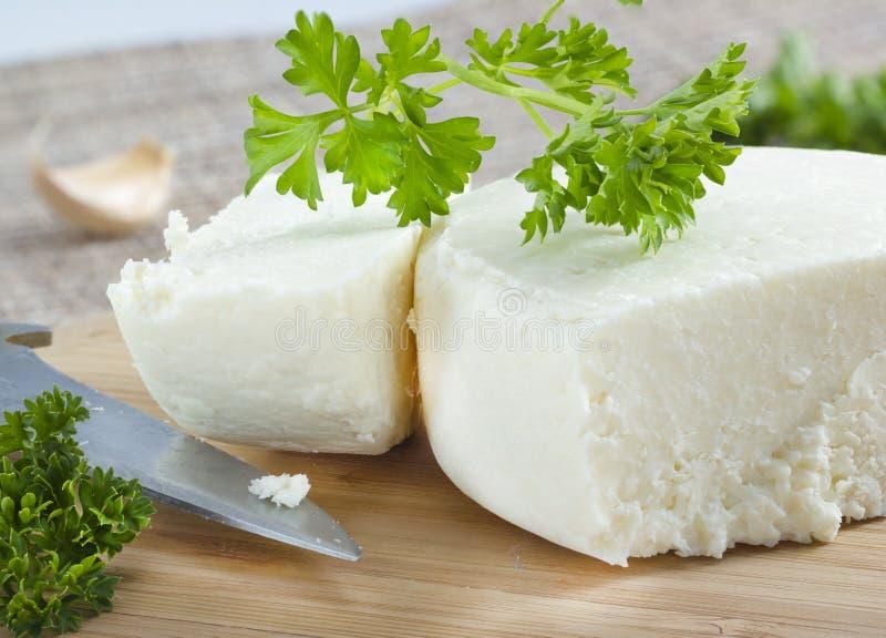 Fromage de Cotija. photographie stock libre de droits