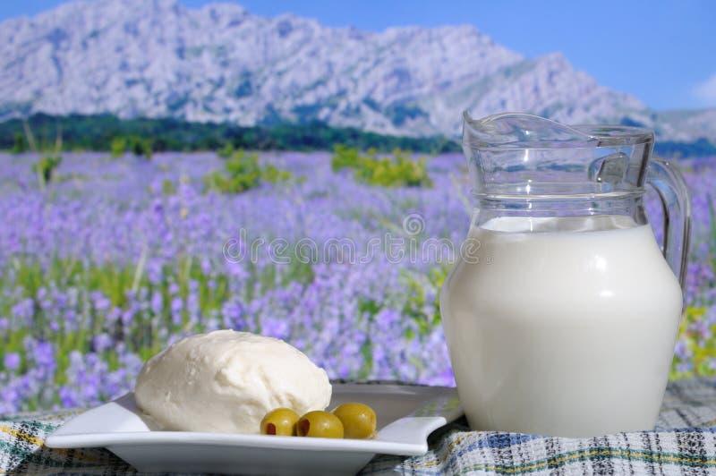 Fromage de mozzarella avec les olives et le lait photographie stock