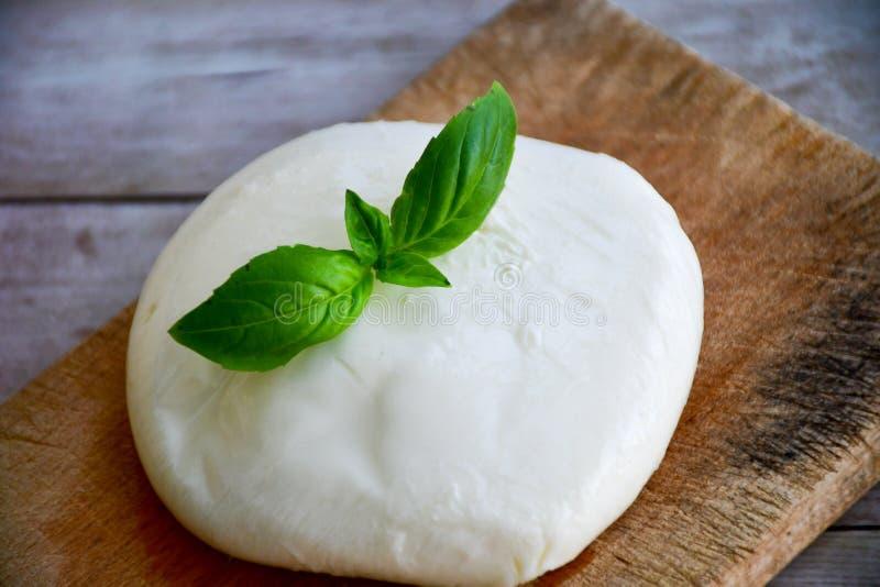 Fromage de mozzarella de buffle et feuille frais de basilic images libres de droits