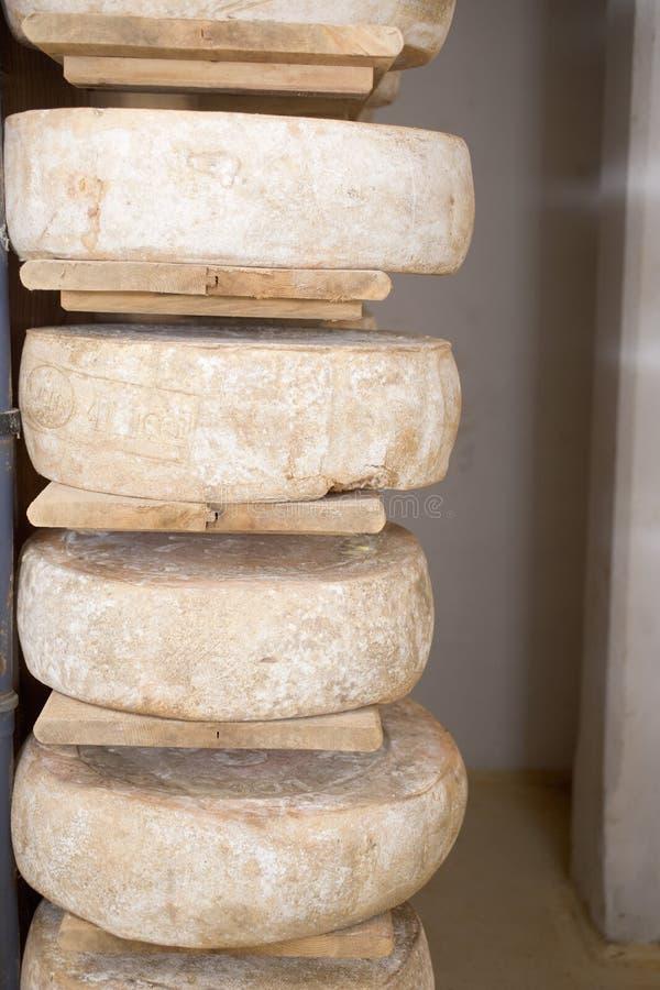 Fromage enregistré image stock
