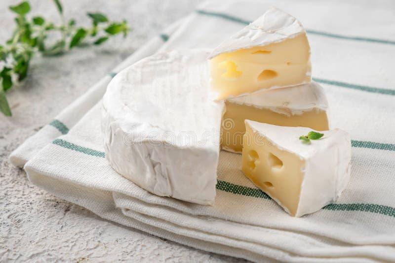 Fromage frais de brie Casse-cro?te italiens d'antipasti Fromage fran?ais de camembert photo libre de droits