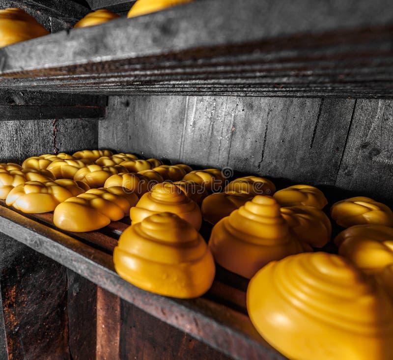 Fromage savoureux tressé d'or photographie stock libre de droits