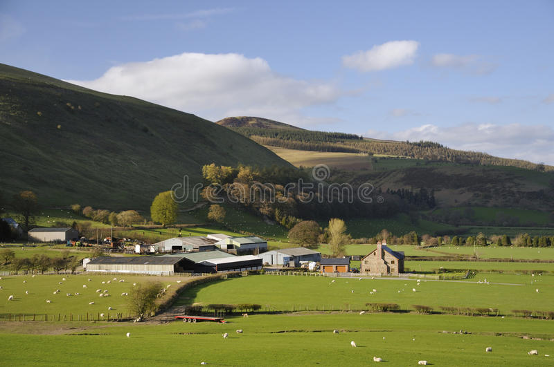 Fron Hill, Radnor Forest. Vron Farm & Fron Hill, Radnor Forest, Powys, Wales Modern Welsh Hill Farm stock photo