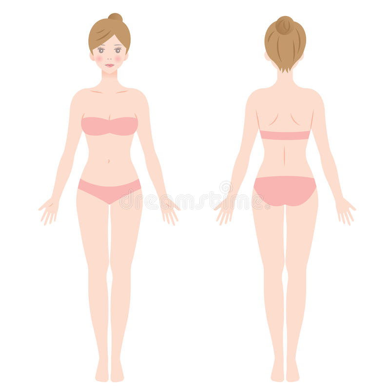 Front and back view of standing female body stock illustration