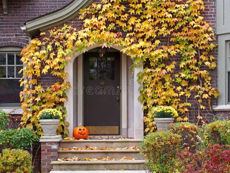 Front door royalty free stock image