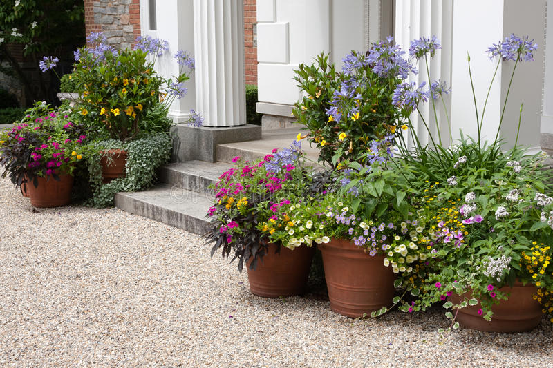 Front entrance stock image image of plants beautiful for Potted plants by front door