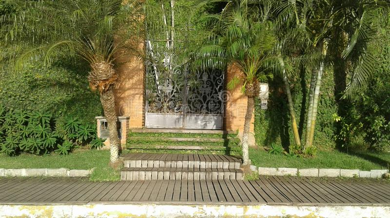 Front Gate With Coconut Trees photos stock