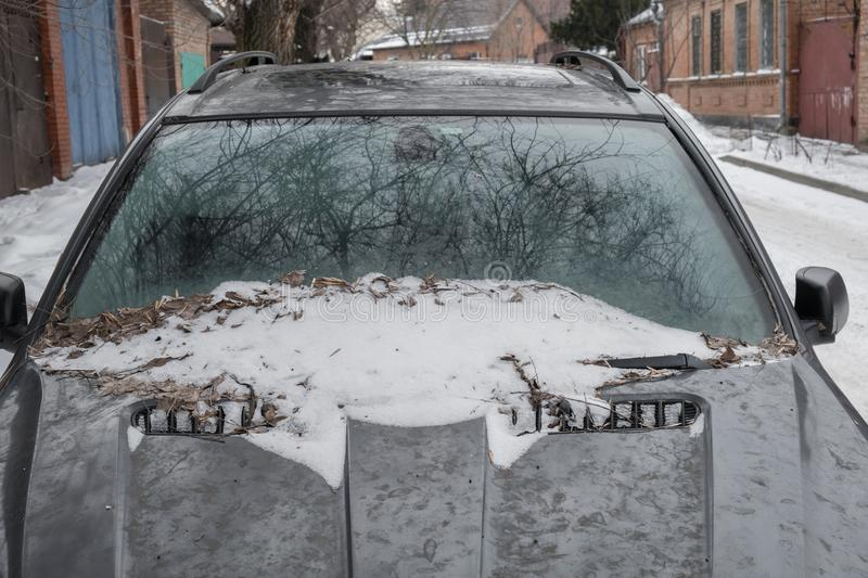 Front glass of car in snow and dry leaves stock photography
