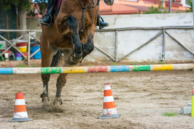 Front Horizontal View Of A Brown Horse Jumping The Obstacle. During An Equestrian Competition On Blur Background stock images