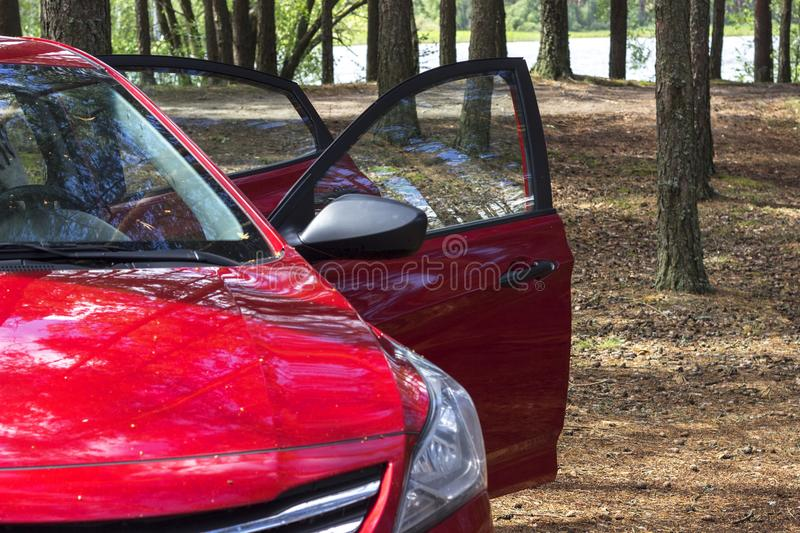Front of a modern red car in the forest. The concept of rest by car and travel. Front of a modern red car in the forest. The concept of rest by car and travel stock images