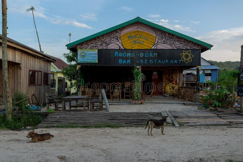 Front of Twin trees host guest house. In Mpay Bay fisherman Village. Dogs wandering on the empty street. Cambodia, 25 october 2017 royalty free stock photos