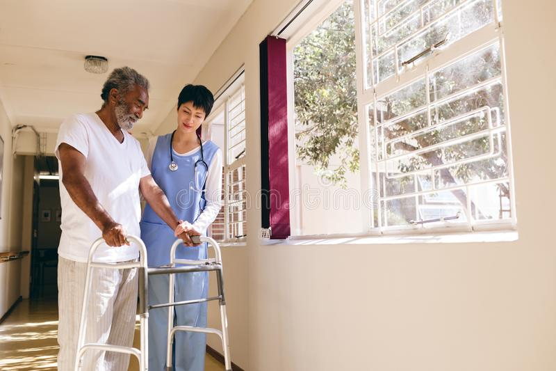 Female nurse helping senior male patient to walk with walker royalty free stock photos