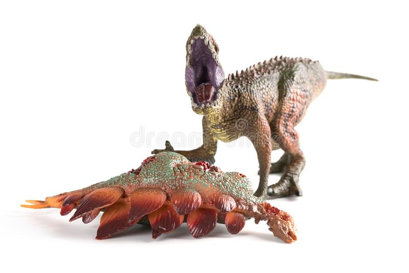 Front view Carcharodontosaurus with a stegosaurus body nearby on white stock photos