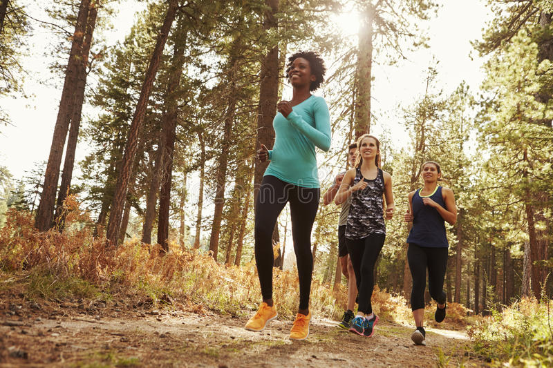 Front view of four adults running in a forest, low angle stock image