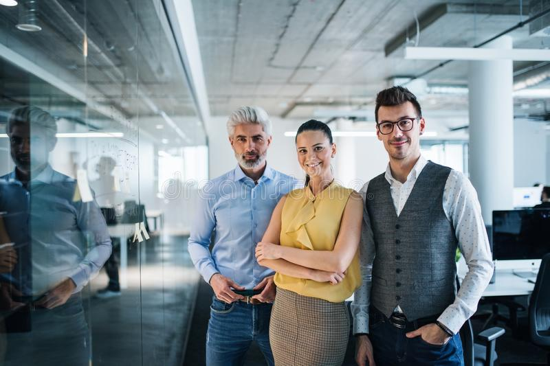 A group of business people standing in an office, looking at camera. royalty free stock photo