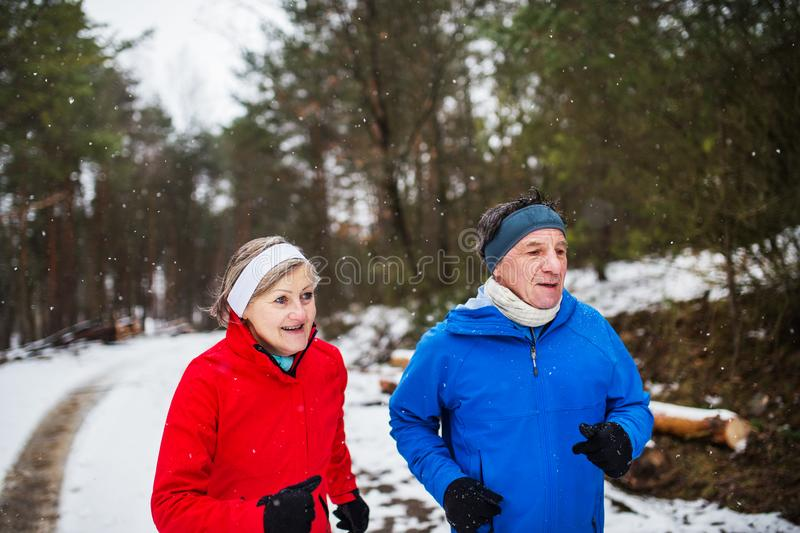 A front view of senior couple jogging in snowy winter nature. royalty free stock images